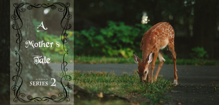 A deer was all she wanted to be: A mothers Tale series two